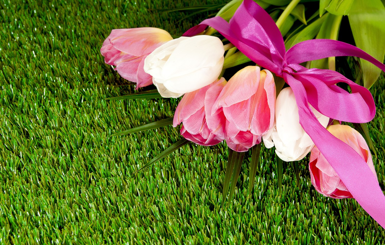 Photo wallpaper grass, lawn, bouquet, tape, tulips, bow