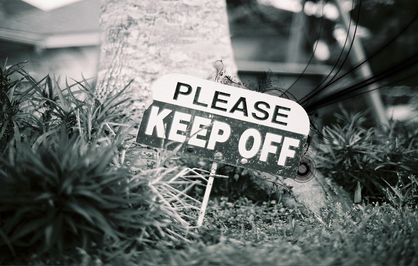 Photo wallpaper grass, style, the inscription, sign, plate, close-up, anger, warning