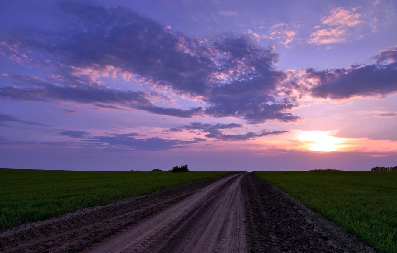 Photo wallpaper road, field, landscape, nature