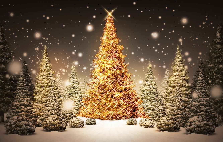 Photo wallpaper decoration, lights, tree, new year