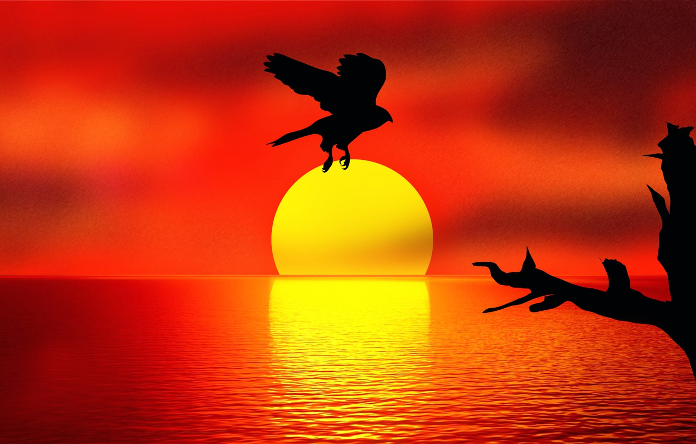 Photo wallpaper sunset, reflection, bird, Holding the SUN