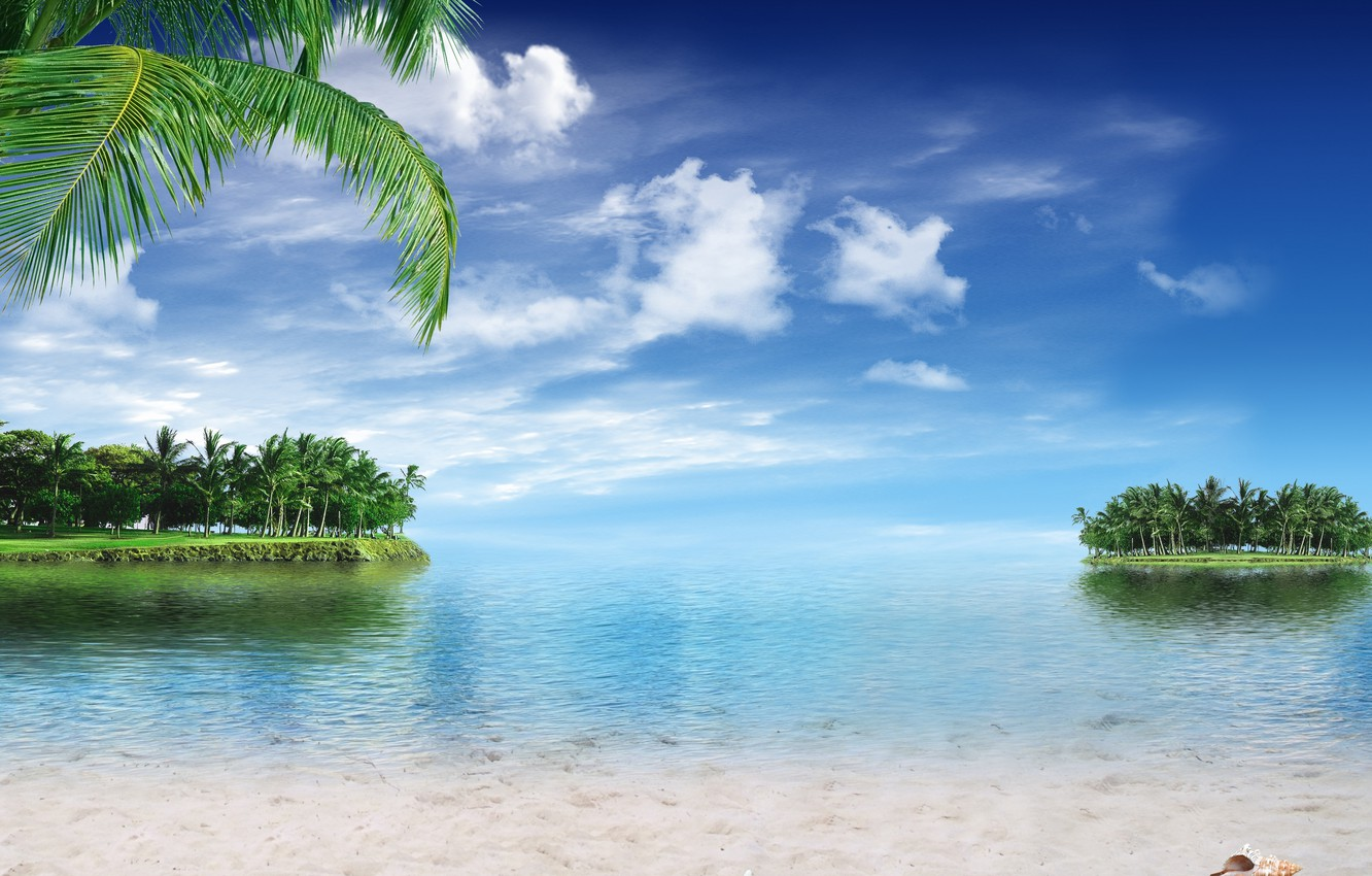 Photo wallpaper sand, sea, beach, tropics, palm trees, shore, summer, sunshine, beach, sea, ocean, paradise, vacation, palms, ...