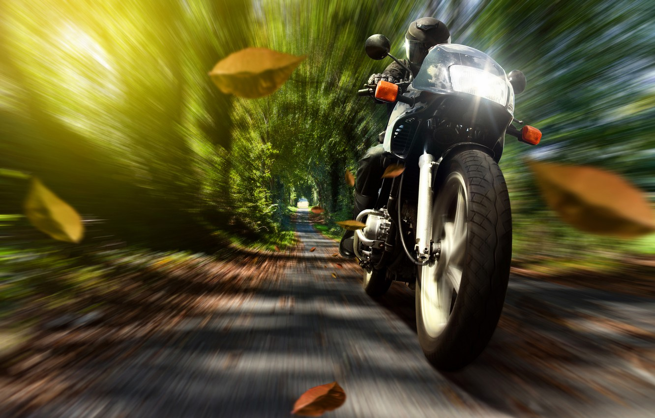 Photo wallpaper autumn, leaves, nature, speed, motorcycle, helmet, motorcyclist