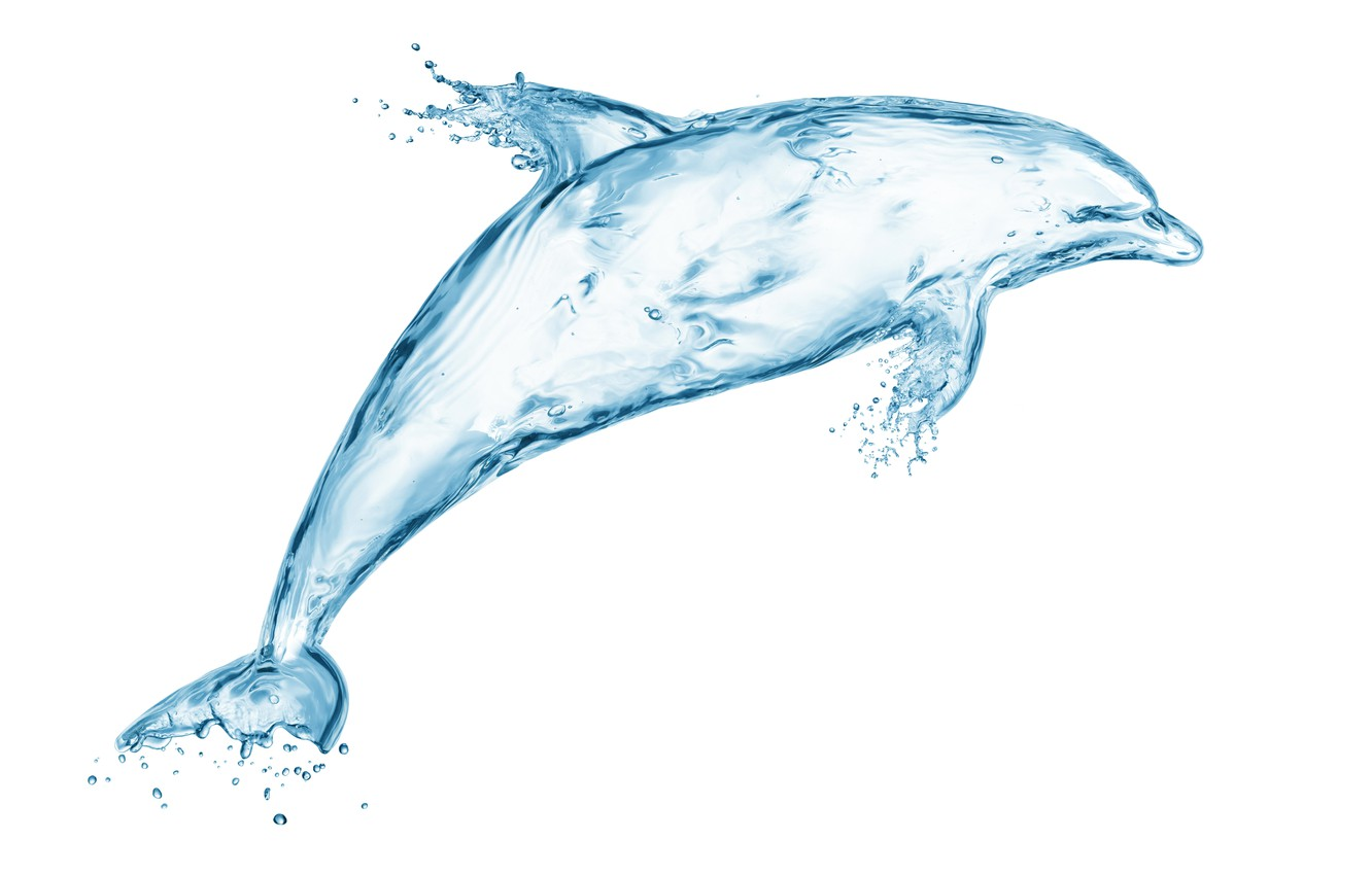 Photo wallpaper water, drops, squirt, Dolphin, creative, figure, splash, art, Water, art, splash, drops, drawing, dolphin, creativity