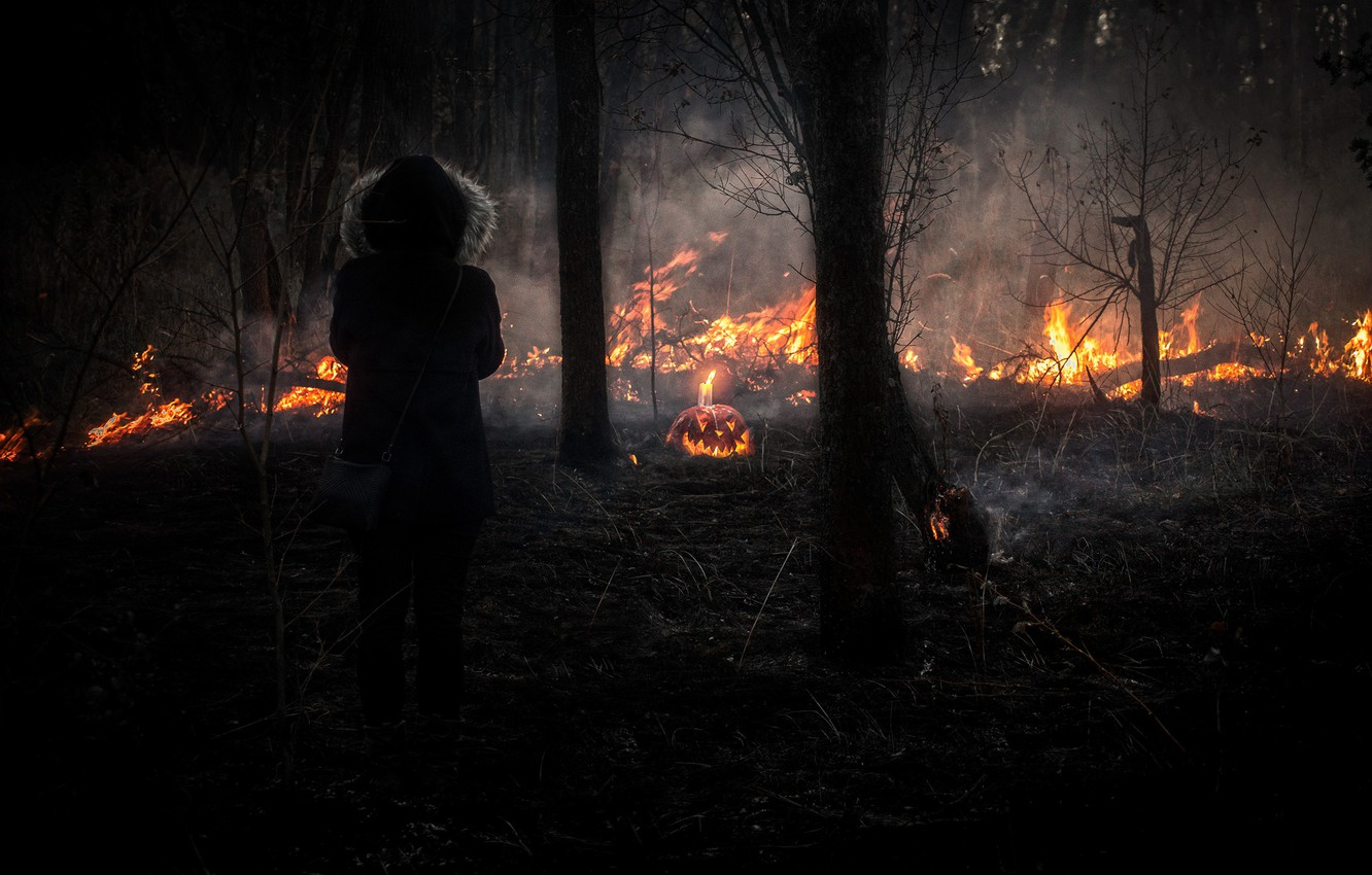 Photo wallpaper forest, look, girl, nature, the fire, pumpkin, fire, girl, forest, nature, look, pumpkin, hallowen, wildfire, …