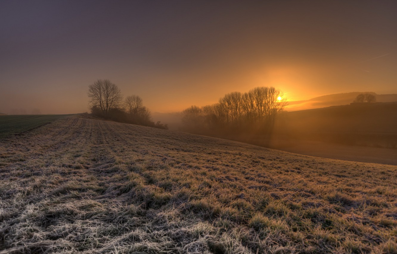 Photo wallpaper field, sunset, fog