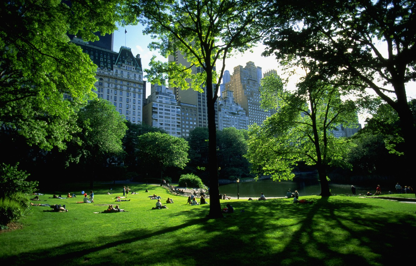 Photo wallpaper Park, stay, new York