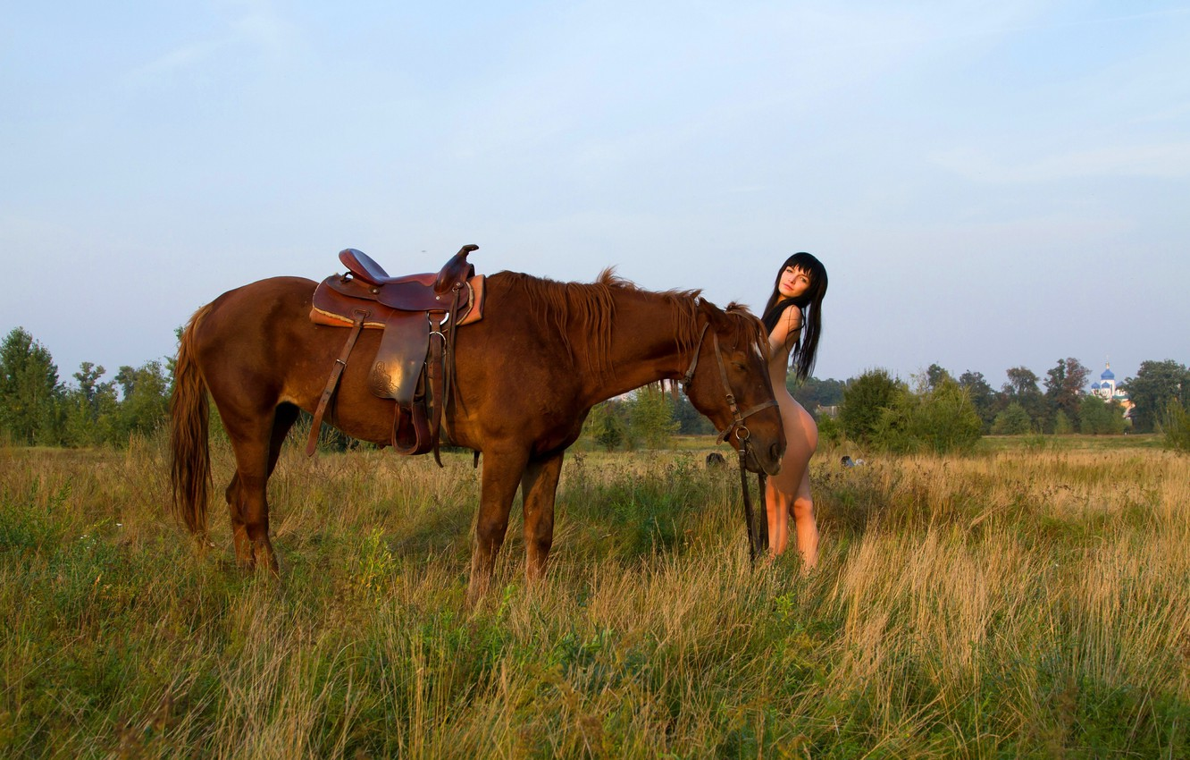 Photo wallpaper field, grass, horse, red, saddle, harness
