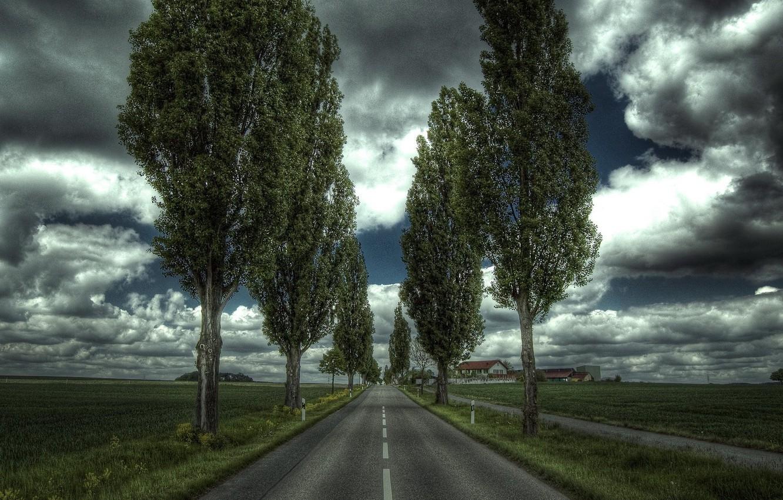 Photo wallpaper Road, Trees, House