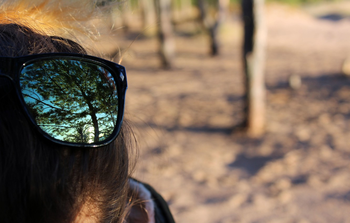 Photo wallpaper autumn, forest, trees, reflection, glasses, real photo
