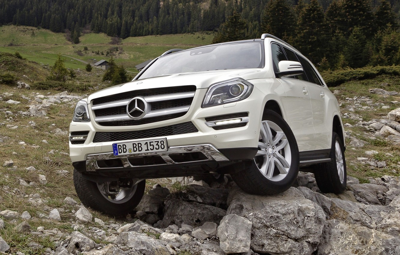 Photo wallpaper forest, white, stones, Mercedes-Benz, jeep, SUV, 500, the front, BlueEfficiency, Mercedes Benz