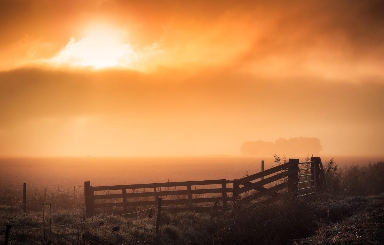 Photo wallpaper field, night, fog, the fence