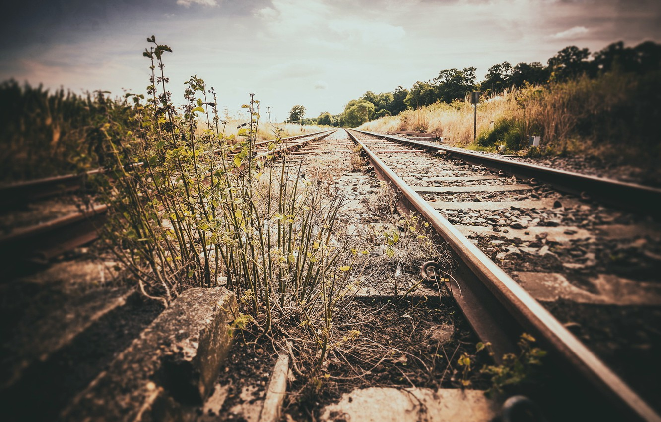 Photo wallpaper nature, background, railroad