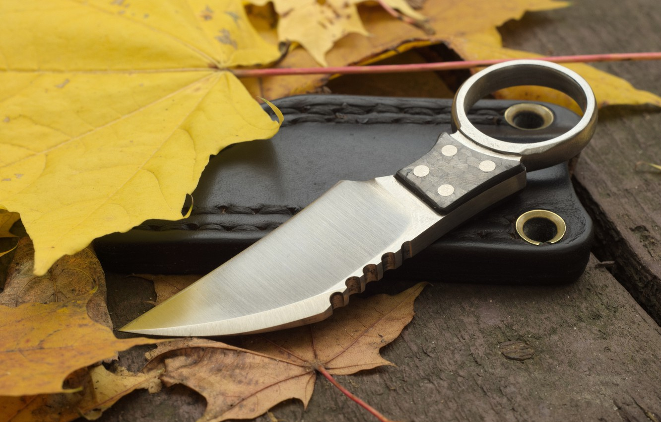 Photo wallpaper leaves, weapons, knife, case
