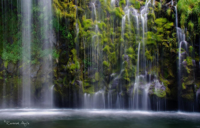 Photo wallpaper forest, nature, lake, waterfall, plants, jungle