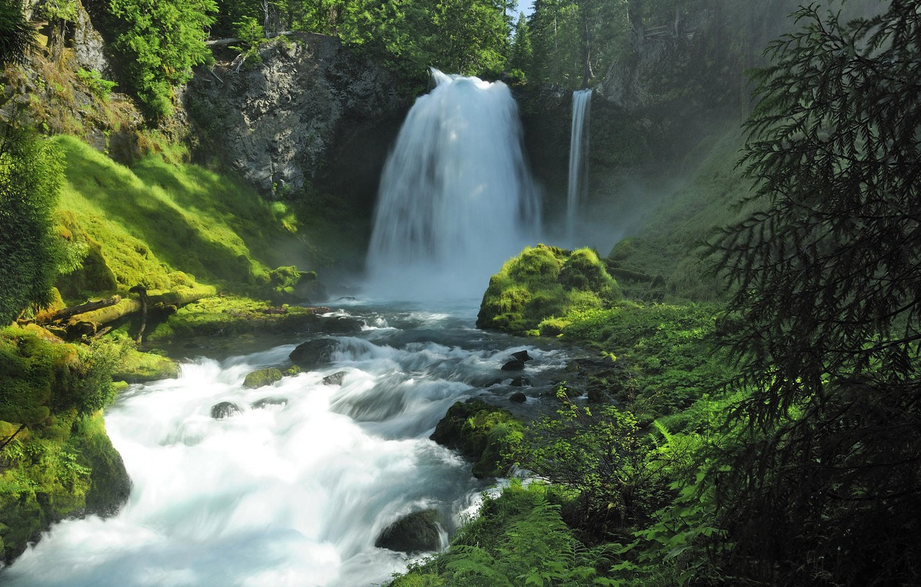 Photo wallpaper forest, summer, water, nature, stones, waterfall