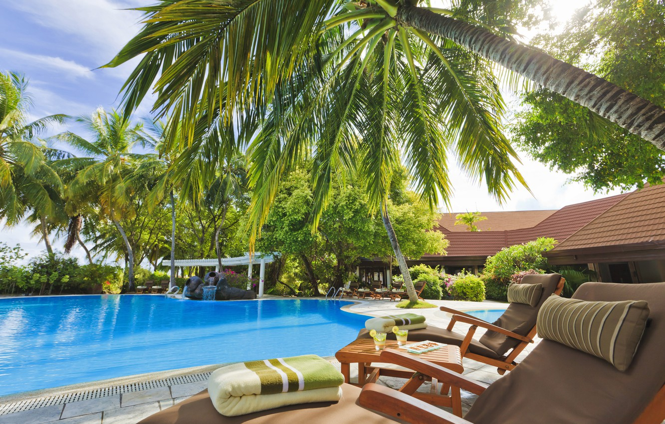 Photo wallpaper trees, palm trees, pool, The Maldives, the hotel, table, sun loungers, exterior