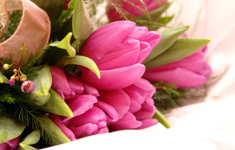 Photo wallpaper flowers, tulips