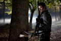 Picture The walking dead, the series, Norman Reedus, The Walking Dead, Daryl Dixon, serial, zombies, actor, ...