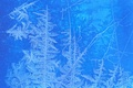 Picture glass, cold, window, winter, frost, pattern