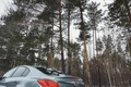 Picture Nature, Forest, Insignia, Opel