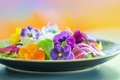 Picture flowers, macro, petals, Pansy, plate