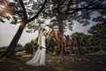 Picture girl, Park, mood, horse, dress, Asian, the bride, wedding dress