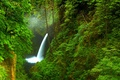 Picture nature, waterfall, trees, Oregon, gorge, river, forest, USA