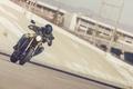 Picture sport classic, Yamaha, yellow, 2016, XSR900, style, moto