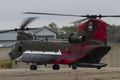 Picture helicopter, military transport, Chinook, CH-47, Chinook