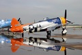 Picture Thunderbolt, American, P-47
