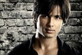 Picture Shahid Kapoor, Shahid Kapoor, Indian actor