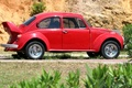 Picture car, Volkswagen Beetle, machine, beetle, Volkswagen, red, the bushes