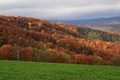 Picture slope, mountains, the sky, grass, autumn, forest