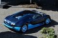 Picture blue, Bugatti, veyron, supercar, supercar, Bugatti, blue, Veyron, grand sport, vitesse
