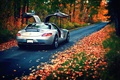 Picture rear, Mercedes-Benz, silvery, SLS, AMG, autumn, leaves