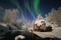 Picture winter, forest, snow, river, Northern lights