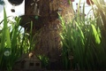 Picture grass, flowers, balloons, tree, Windows, home, lantern, trunk, settlement, giant