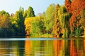 Picture autumn, trees, lake, landscape, nature, autumn, leaves, tree