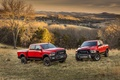 Picture pickup, Dodge, two, 2500, forest, SUV, Ram