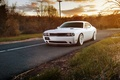 Picture Challenger, muscle car, dodge challenger, white
