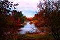 Picture colors, autumn, Autumn, river, treatment, river, fall