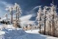 Picture sport, snow, winter