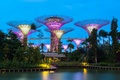 Picture palm trees, illumination, Park, trees, Gardens by the Bay, the evening, Singapore, pond, structure, design