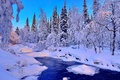 Picture landscape, spruce, snow, winter, trees, river, forest