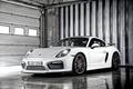 Picture 2015, Porsche, Porsche, Cayman, Caiman, GT4