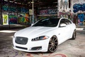 Picture White, Jaguar, Graffity