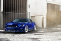 Picture Ford Mustang, William Stern, blue, car