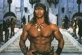 Picture Male, Schwarzenegger, Conan the barbarian, Brutal