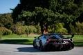 Picture nature, Lamborghini, supercar, rear view, Veneno